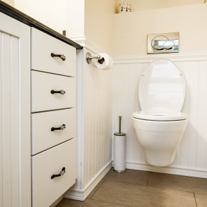 Troy NY guest bathroom remodeling