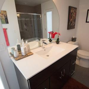 Voorheesville, NY Guest Bathroom Renovation